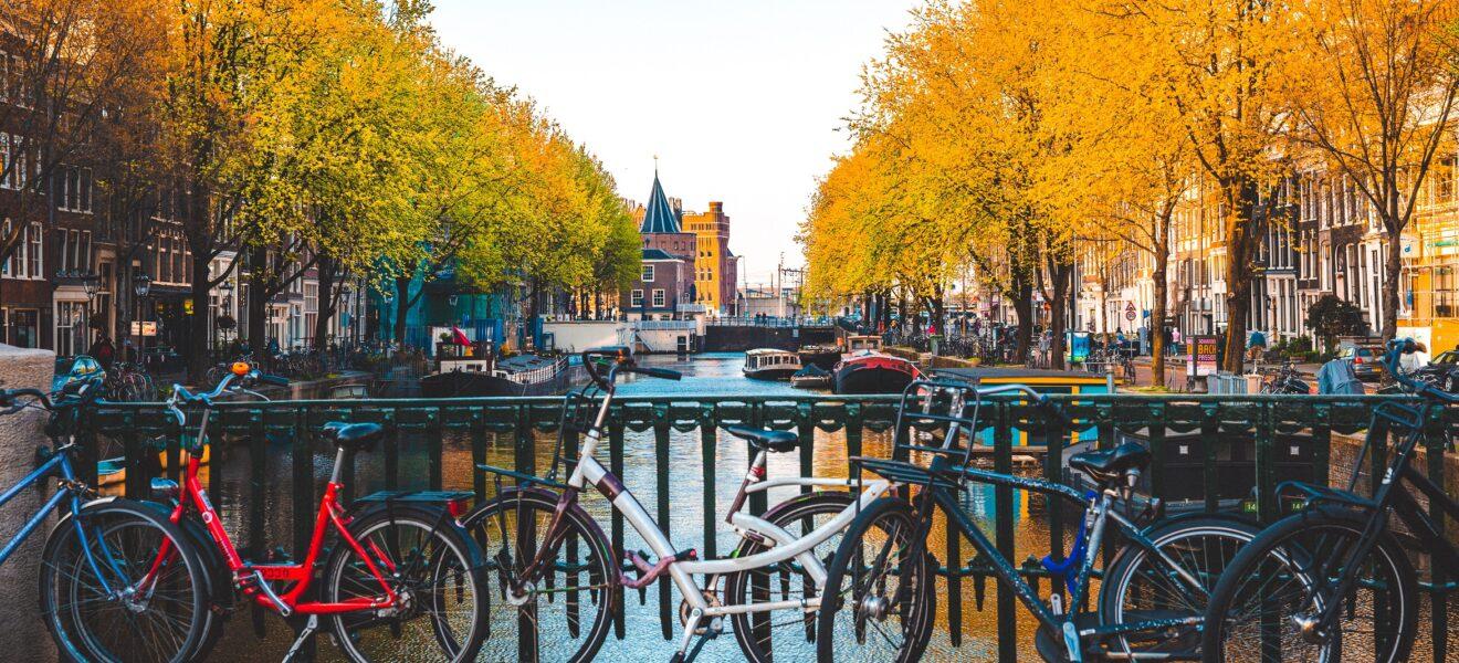 BBWF 2021 Amsterdam >> Here we come